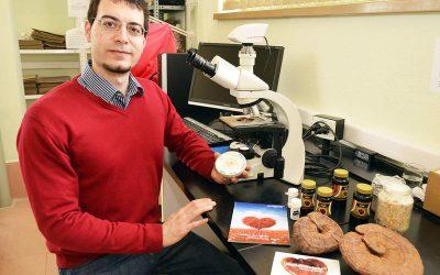 MundoReishi comercializa en polvo un hongo único