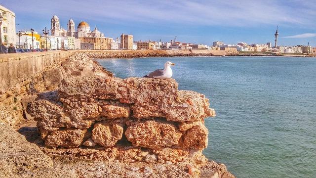 MundoReishi Cádiz