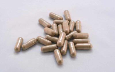 Sólo 1 de cada 4 productos etiquetados como reishi (Ganoderma lucidum) tiene realmente reishi