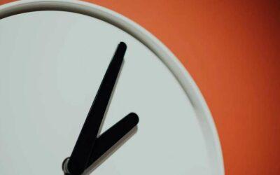 ¿Cuándo es mejor tomar reishi puro? ¿Mañana, tarde o noche?